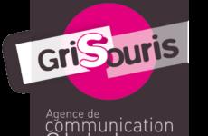 Logo Gris Souris