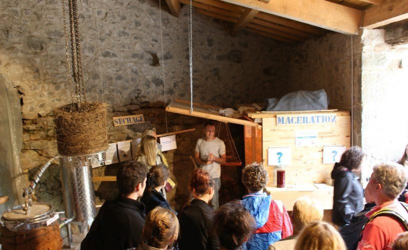 Distillerie de Paiolive