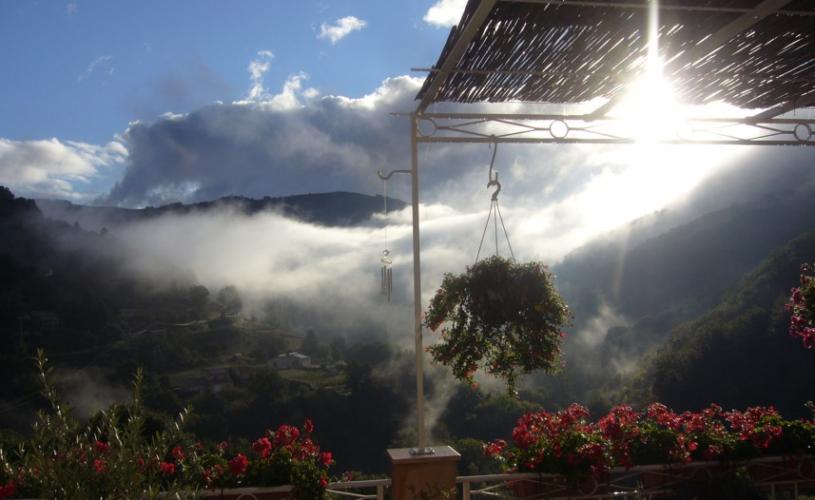 Vue panoramique depuis la terrasse