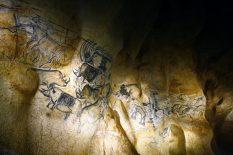 Découvrez les plus beaux trésors de l'Ardèche